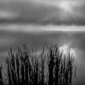 Foggy Dawn - Wanaque Reservoir, NJ © jj raia